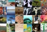 Tratado de educación ambiental