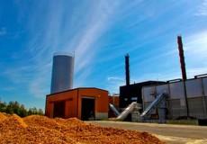 Beware the Biomass Economy