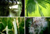 Nuevos fundamentos éticos, filosóficos y políticos para una biocivilización