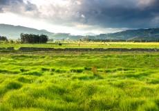 Espace rural petites et moyennes collectivités et gouvernance mondiale