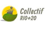 Lo que está en juego en Río+20