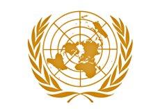 Organizaciones de la sociedad civil alertan en vísperas de Rio 2012