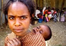 Hacia el futuro que queremos: erradicación del hambre y transición a sistemas agrícolas y alimentarios sostenibles