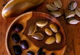 Agroecología: única esperanza para la soberanía alimentaria y la resiliencia socioecológica