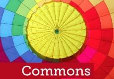 Os bens comuns modelo de gestão dos recursos naturais